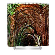 Inner Sanctum II Shower Curtain