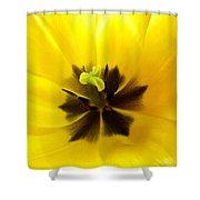 Inner Tulip Macro Shower Curtain