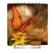 Insect - Butterfly - Just A Bit Of Orange  Shower Curtain
