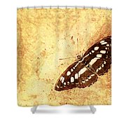 Insect Study Number 66 Shower Curtain