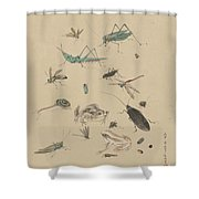 Insects C1825 Shower Curtain