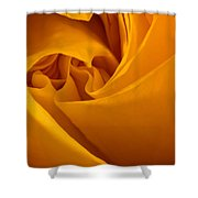 Inside A Yellow Rose Shower Curtain