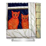 Orange Cats Looking Out Window Shower Curtain
