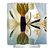 Inside Magnolia Reflect  Shower Curtain