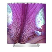 Inside The Black Iris Shower Curtain