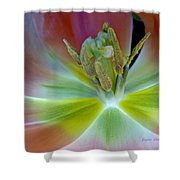 Inside The Tulip Shower Curtain