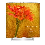 Inspirational Words All You Need Is Love Shower Curtain