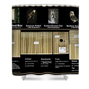 Instructions Cedar Nest Box For Kestrel And Owl Shower Curtain