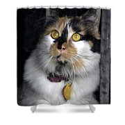 Intense Cleo Shower Curtain