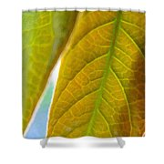 Interesting Leaves - Digital Painting Effect Shower Curtain