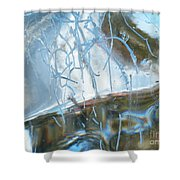 Interior Issues  Shower Curtain