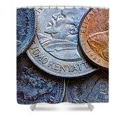 International Coins Shower Curtain