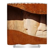 Interstate 10 Project Outtake_0010413 Shower Curtain