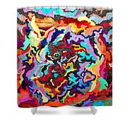 Intertwined Rainbow Shower Curtain