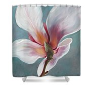 Intimate Apparel Shower Curtain