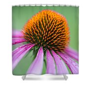 Intimate View Shower Curtain