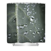 Into Every Life A Little Rain Must Fall Shower Curtain