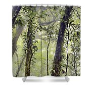 Into The Clouds II Shower Curtain