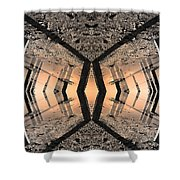 Into The Core Shower Curtain