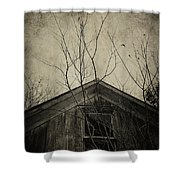 Into The Dark Past Shower Curtain by Trish Mistric