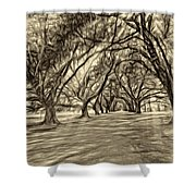 Into The Deep South - Paint 2 Sepia Shower Curtain