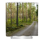 Into The Forest Shower Curtain