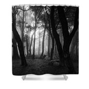 Into The Mystic Shower Curtain by Marco Oliveira