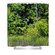 Into The Sunlight He Rises Shower Curtain