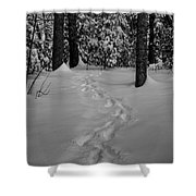 Into The Woods Pisgah Forest Black And White Shower Curtain