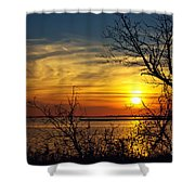 Intricate Details Shower Curtain
