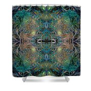 Intrigue Of Mystery Four Of Four Shower Curtain