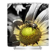 Invitation Accepted Shower Curtain