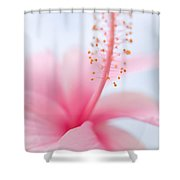 Invitation Into The Light Shower Curtain by Jenny Rainbow
