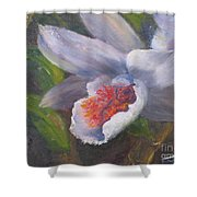 Inviting- Oil Shower Curtain