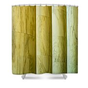 Ionic Architectural Columns Details Shower Curtain