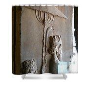 Iran Ancient Umbrella Shower Curtain