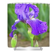 Iridescent Flower Shower Curtain