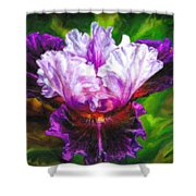 Iridescent Iris Shower Curtain