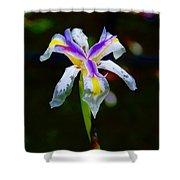 Iris 2012 Shower Curtain