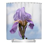 Iris 27 Reaching For The Sky Shower Curtain