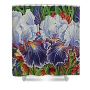 Iris Blooms Shower Curtain