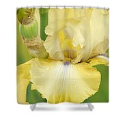 Iris County Cork Shower Curtain