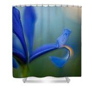 Iris Edge Shower Curtain