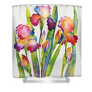 Iris Elegance Shower Curtain