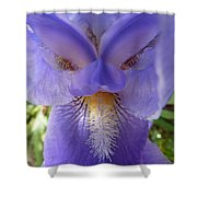 Iris Face Shower Curtain
