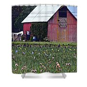 Iris Field And Barn Shower Curtain