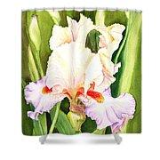 Iris Flower Dancing Petals Shower Curtain