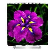 Iris Flower Shower Curtain