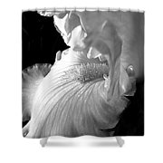 Iris Flower In Black And White Shower Curtain