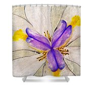 Lily Flower Macro Photography Shower Curtain